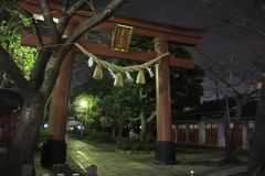 Night View of Kamata Hachiman Shrine