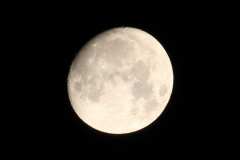 Countdown to Full Moon in Feb - 3 Days Left