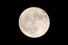Full Moon in Feb 2014