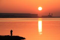 Japan Nature - Photographer to the Sun