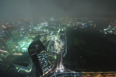 Rainy Tokyo Night