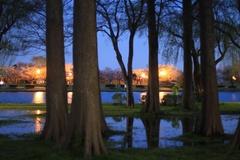 Night Sakura at Mizumoto Park