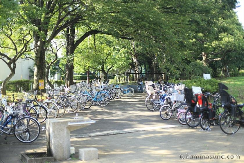 Parking of Hanegi Park