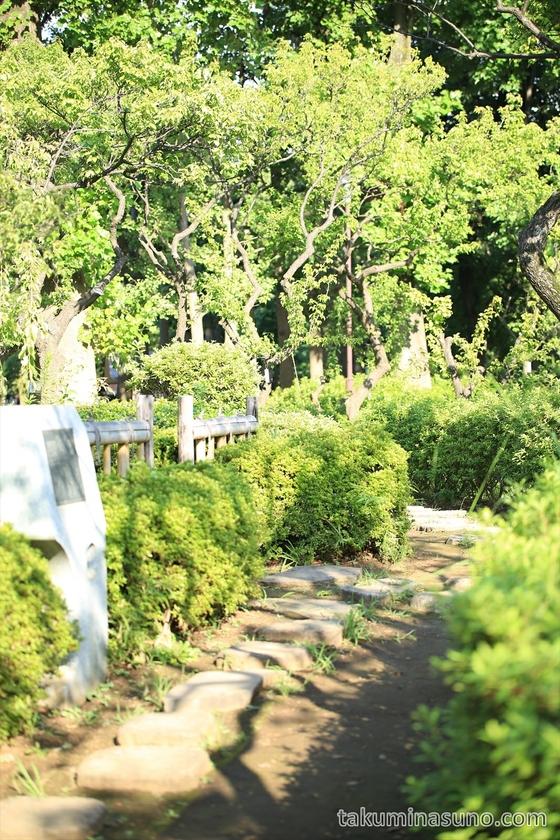 Path of Hanegi Park