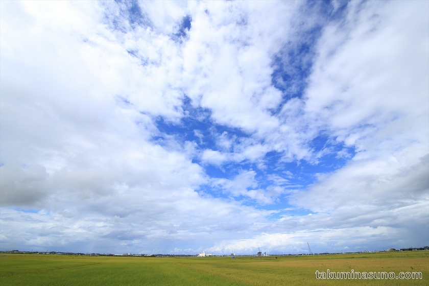 Skyscape with rice field in Niigata