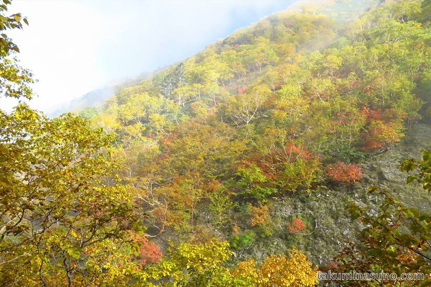 Mountain ridge got yellow at Mt Senjougatake