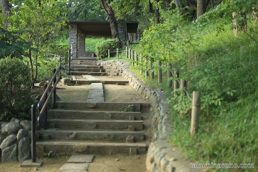 Path of Tamagawadai Park