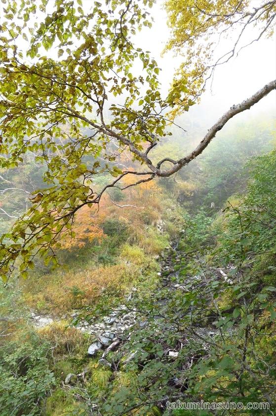 Small river from mountain path at Mt Senjougatake
