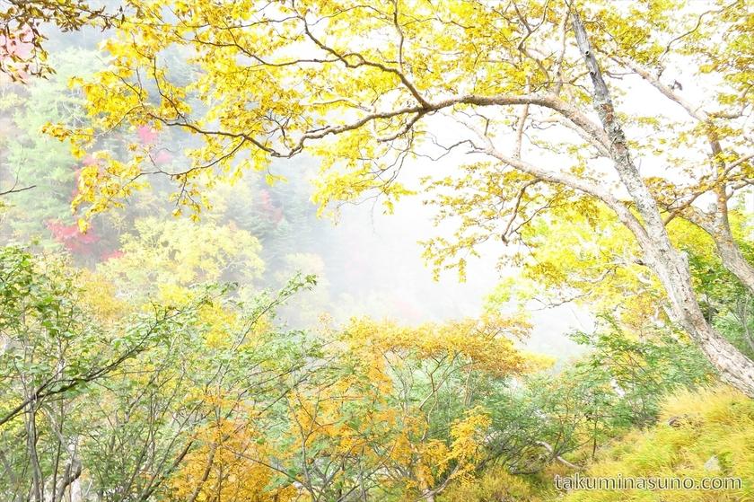 White mist or simply cloud at Mt Senjougatake