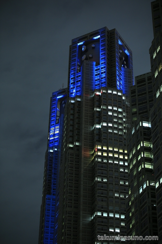 Whole Figure of Tokyo Metropolitan Tower in Blue