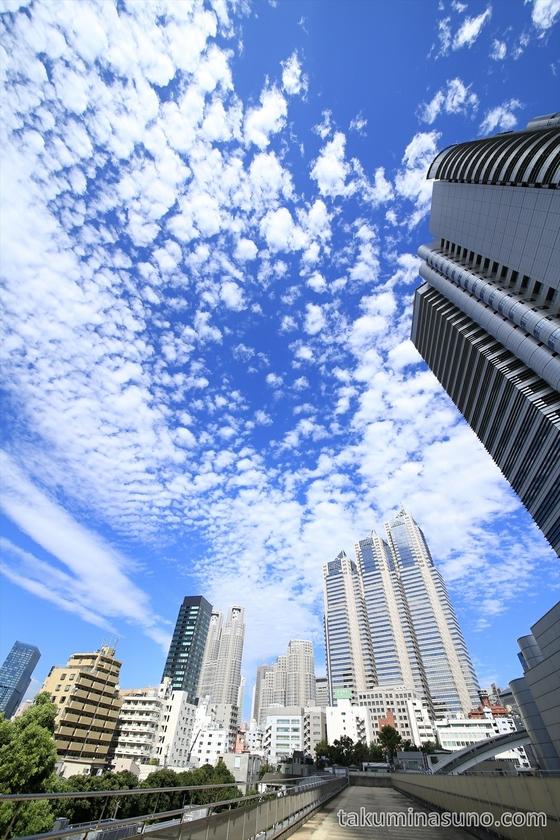 Autumn Skyscape at Shinjuku 2