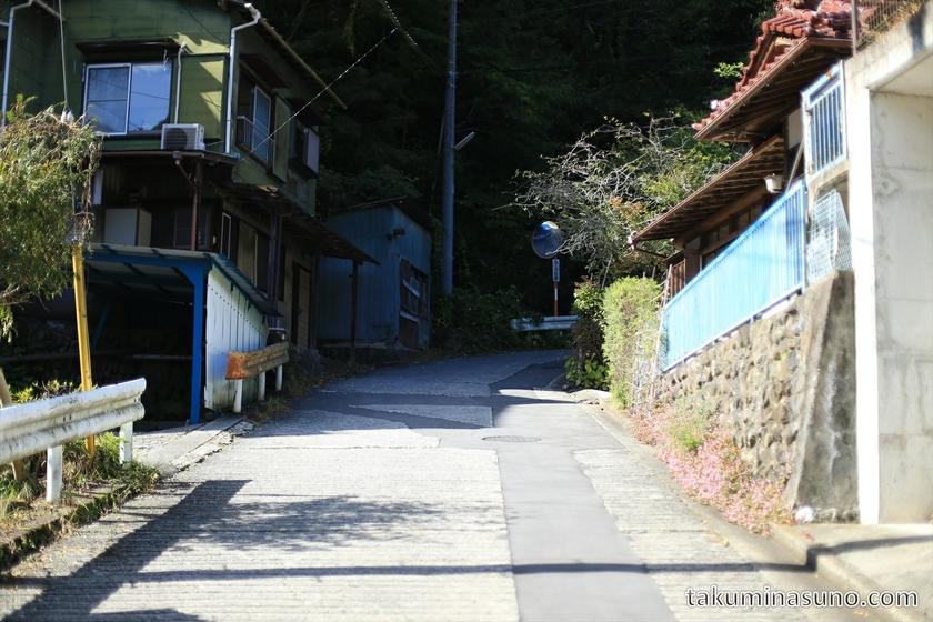 Mountain Path to Mt. Mutsuishi at Okutama 01