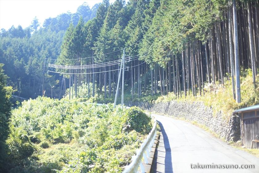 Mountain Path to Mt. Mutsuishi at Okutama 03