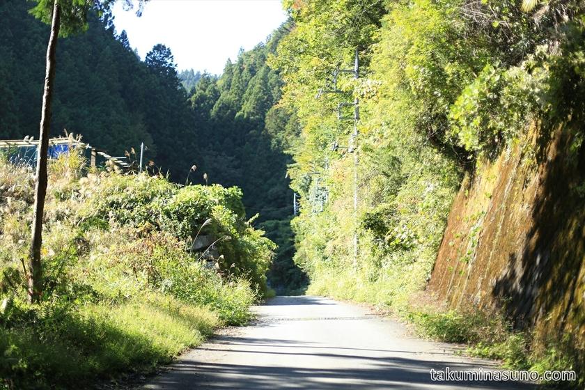 Mountain Path to Mt. Mutsuishi at Okutama 06
