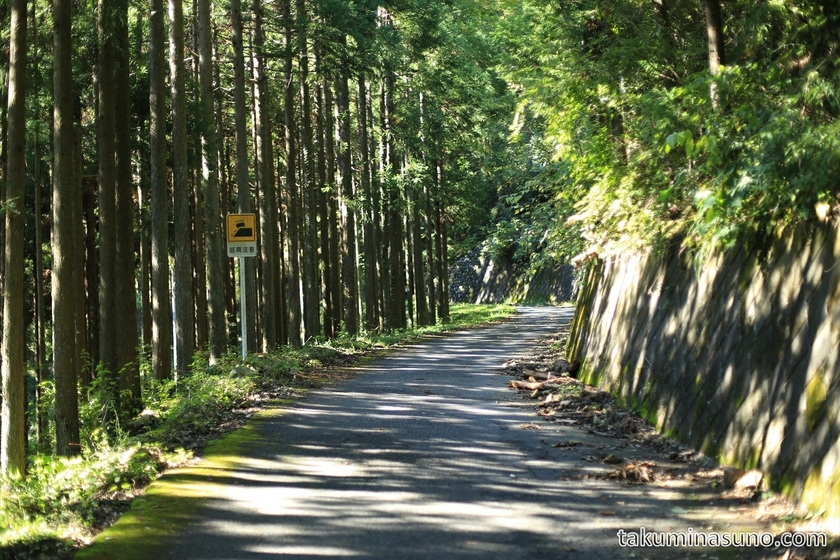 Mountain Path to Mt. Mutsuishi at Okutama 07