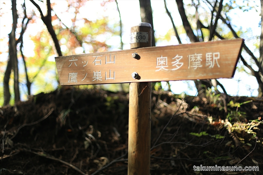 Trekking Course to Mt Mutsuishi at Okutama 08