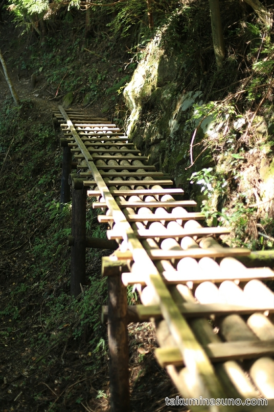 Wooden Bridge on the way to Mt Mutsuishi at Okutama