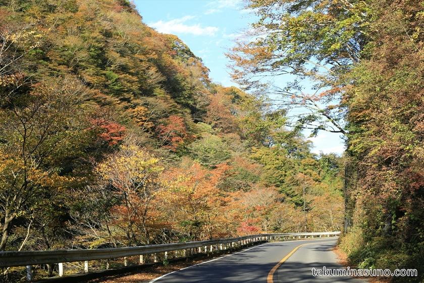 Autumn Colors Street of Hakone