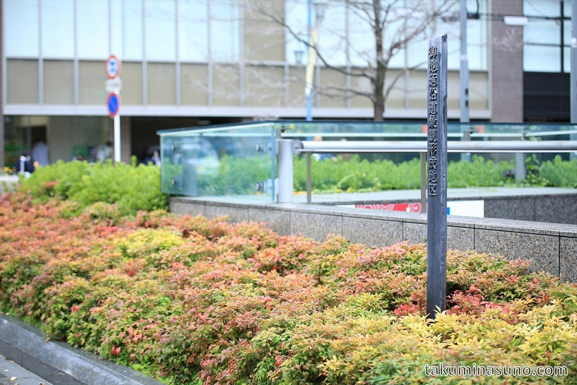 Colorful Enkianthus perulatus in front of Kyoto City Hall