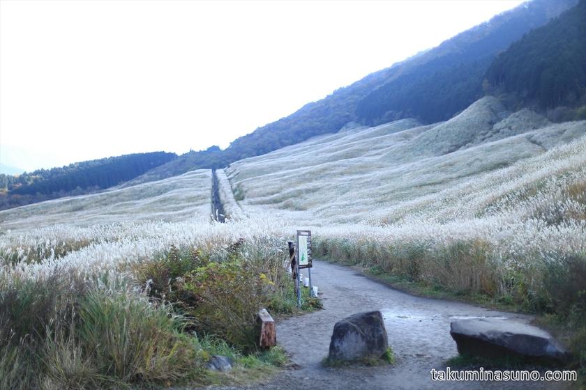 Entrance of Sengokuhara Hakone