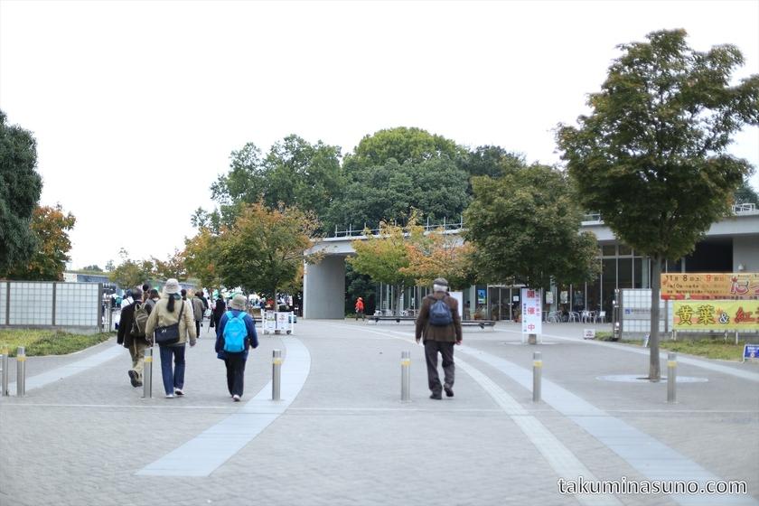 Entrance of Showa Memorial Park from Tachikawa station