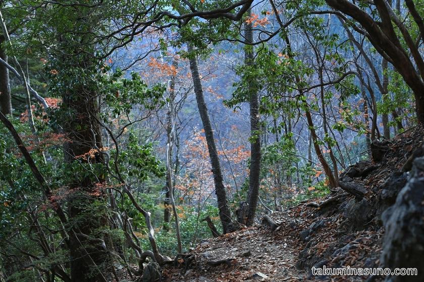 Hyakuhiro-no-taki Waterfall is Nearby