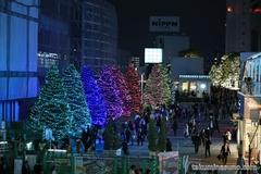 新宿駅南のイルミネーション