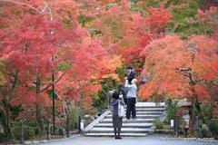 紅葉レポ2014 これが京都で見たかった!麗しの赤があふれる京都の秋