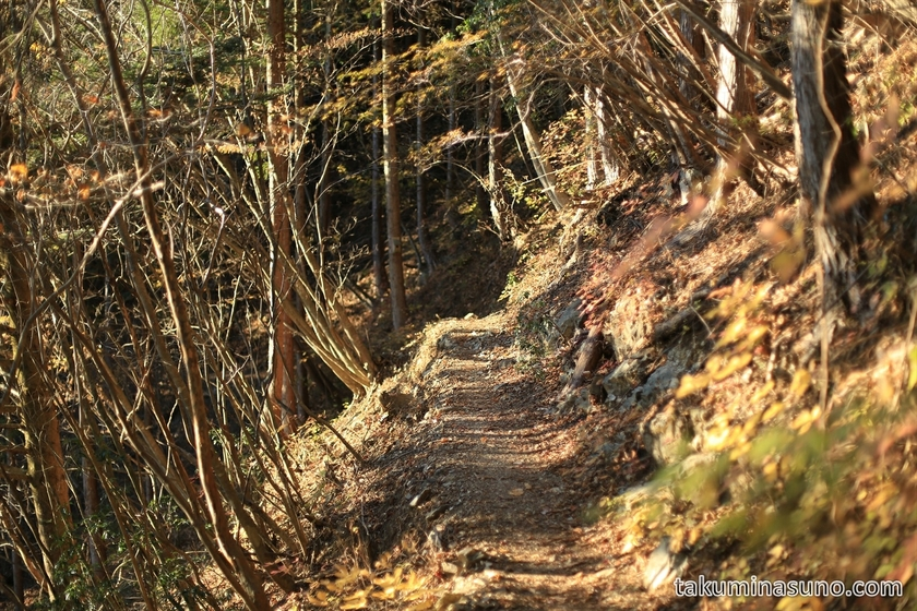 Relatively Dangerous Street to Hyakuhiro-no-taki Waterfall