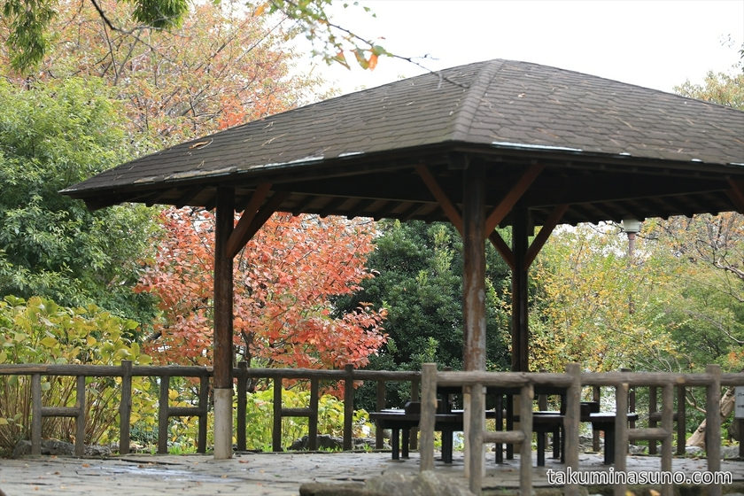 Rest area at Tamagawadai Park