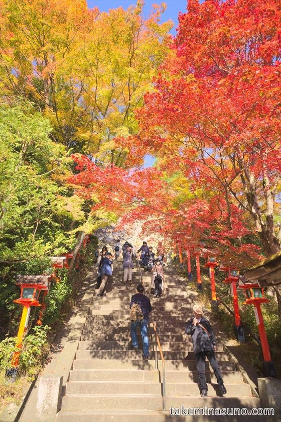 Stone stairs at Kurama Temple from bottom