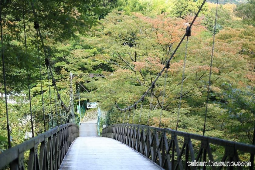 Suspension bridge of Hakone