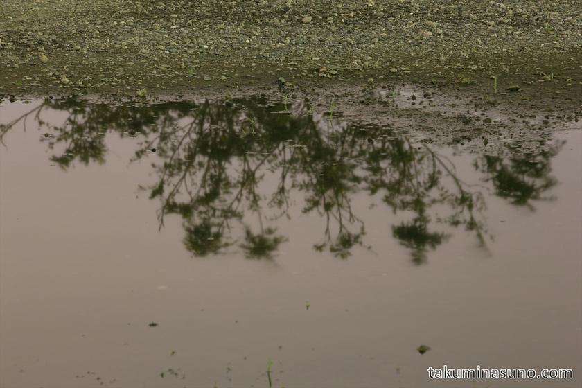 Water pool in the riverside of Tama River