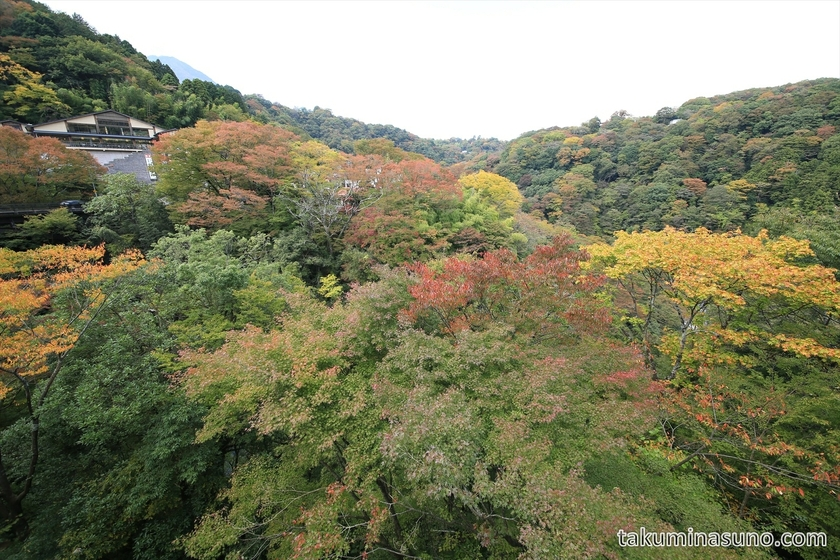 Wide view of autumn colors at Hakone