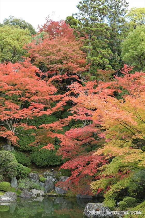 Yuzen-en Garden at Chionin Temple