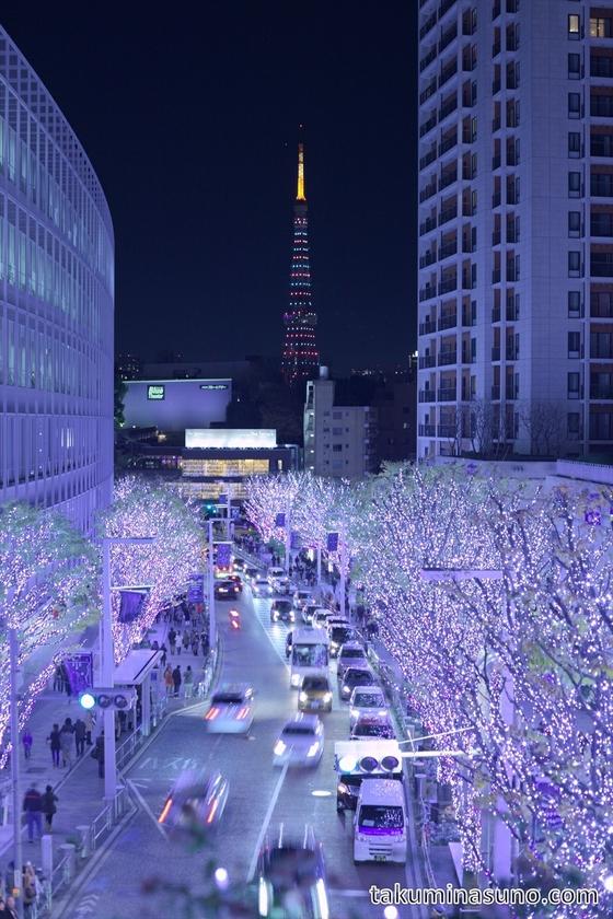 Blue Illumination at Roppongi Keyakizaka Street