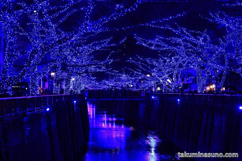 Bridge and Illuminations of Meguro River