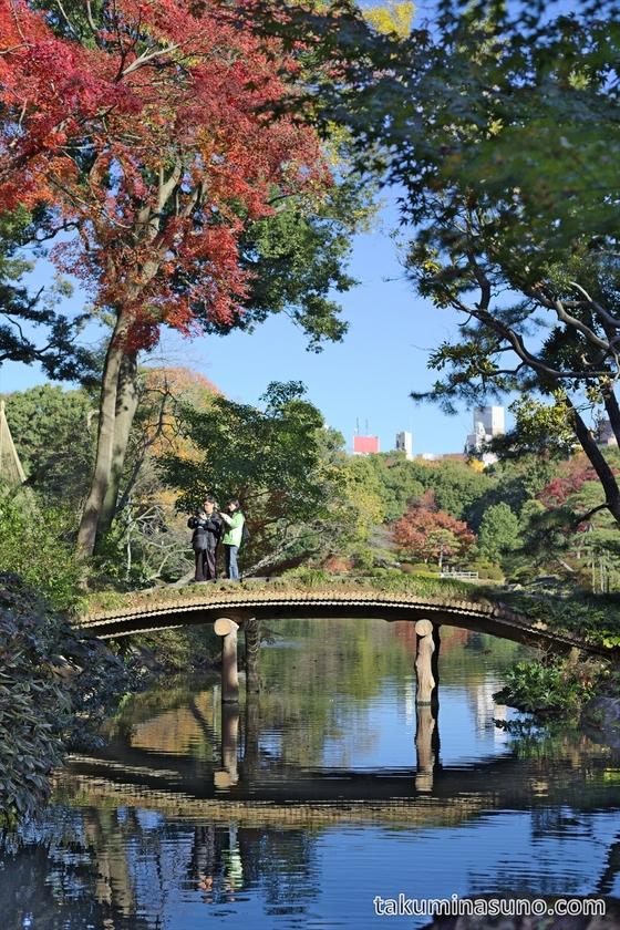 Bridge in Rikugien Gardens
