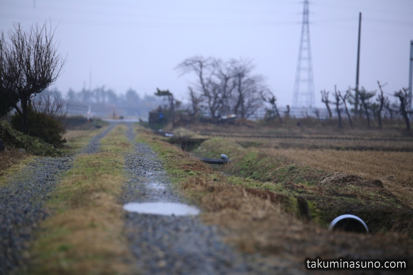 Cloudy Day of Niigata