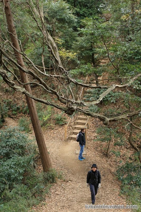 Hiking Course from Genjiyama Park to Kita-Kamakura Station