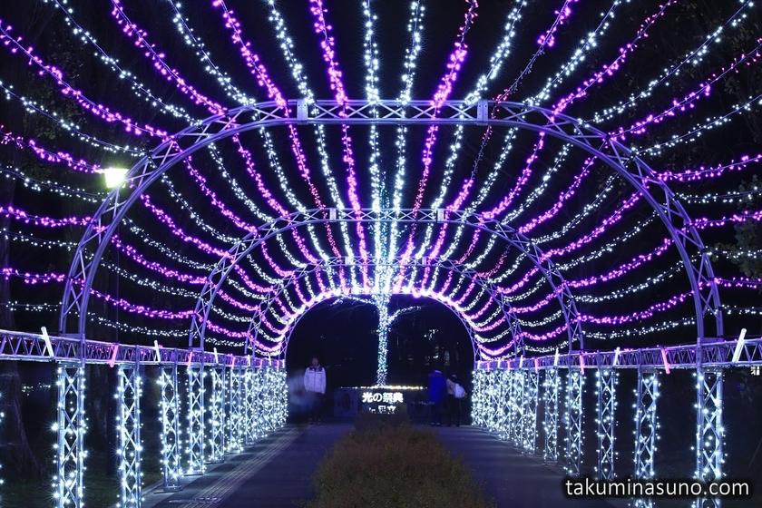 Illumination of Motofuchie Park
