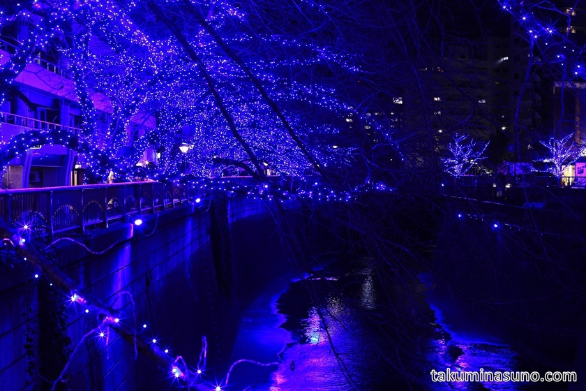 Illuminations of Meguro River