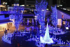 Let's Go Out for Fantastic Illuminations! Terrace Mall Shonan is a Good Filming Location for Photographers!