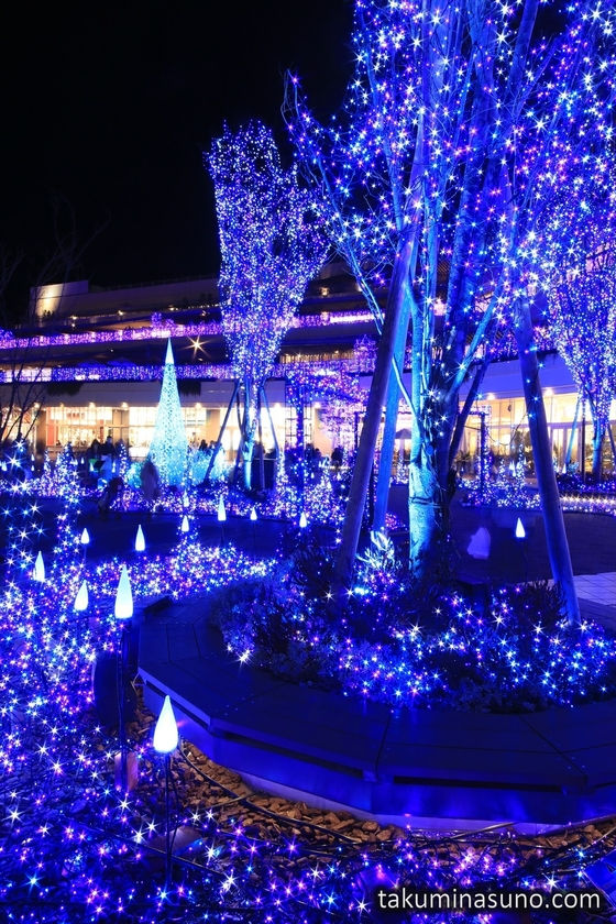 Magical Colors of Illuminations at Terrace Mall Shonan