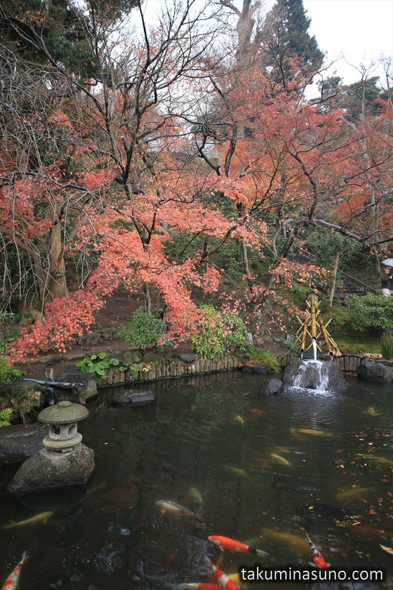 Pond of Hasedera Temple