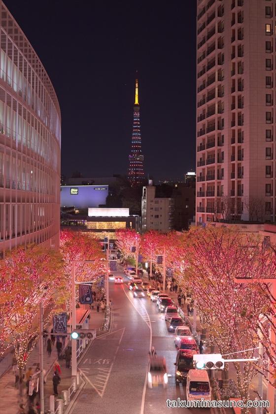 Red Illumination at Roppongi Keyakizaka Street