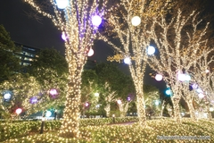 Magical Colors of Sparkling Illuminations Welcome You at South of Shinjuku