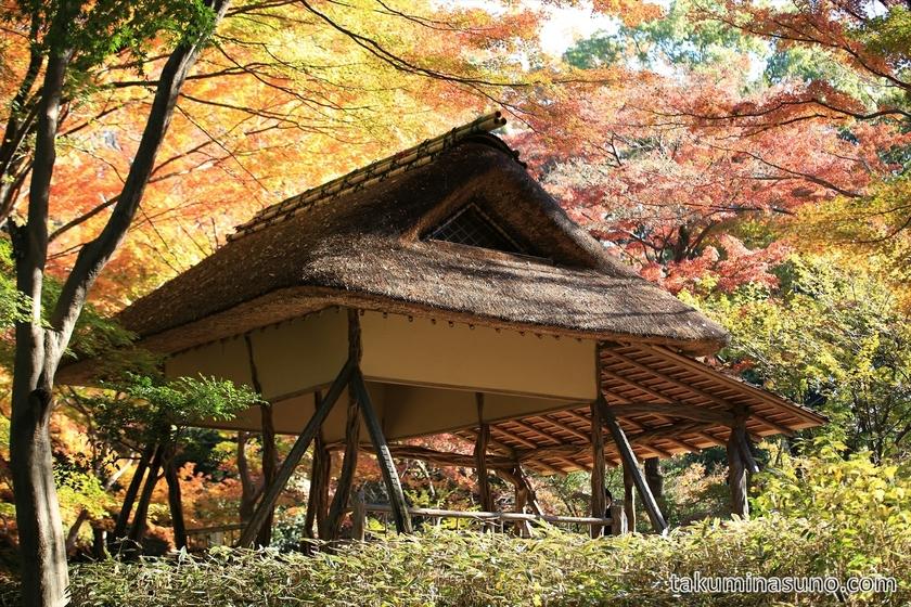 Tea House at Rikugien Gardens