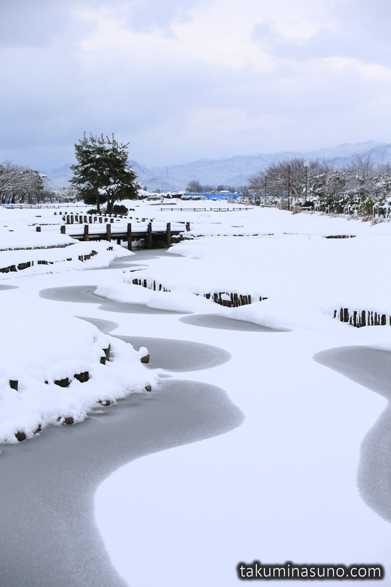 Frozen Ponds at Lake Hyoko