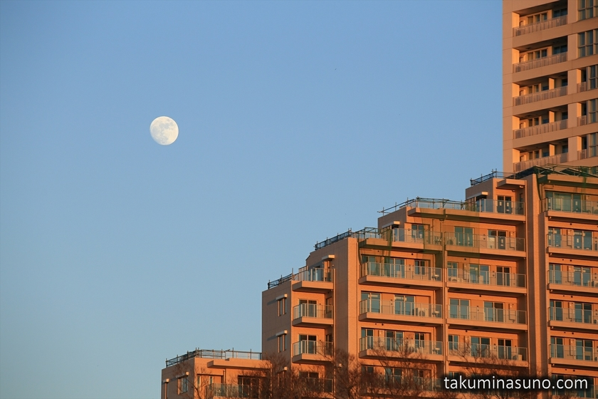 Moon and Apartments